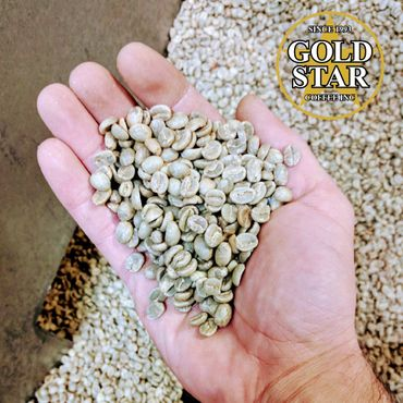 World's Best Coffee - Green Coffee Beans